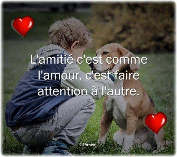 Citations Du Jour Amour