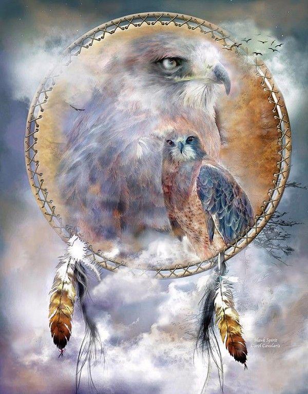 Résultats de recherche d'images pour «sagesse amérindienne»
