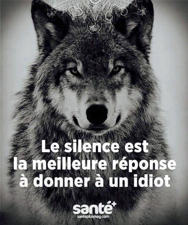 Condamnation Du Loup Centerblog